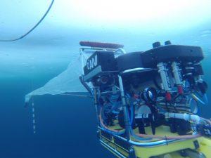 Der Tauchroboter, das Untereis-ROV Beast, während eines Tauchgangs unter Meereis mit dem neuen ROV-Netz. Foto: AWI Meereisphysik.
