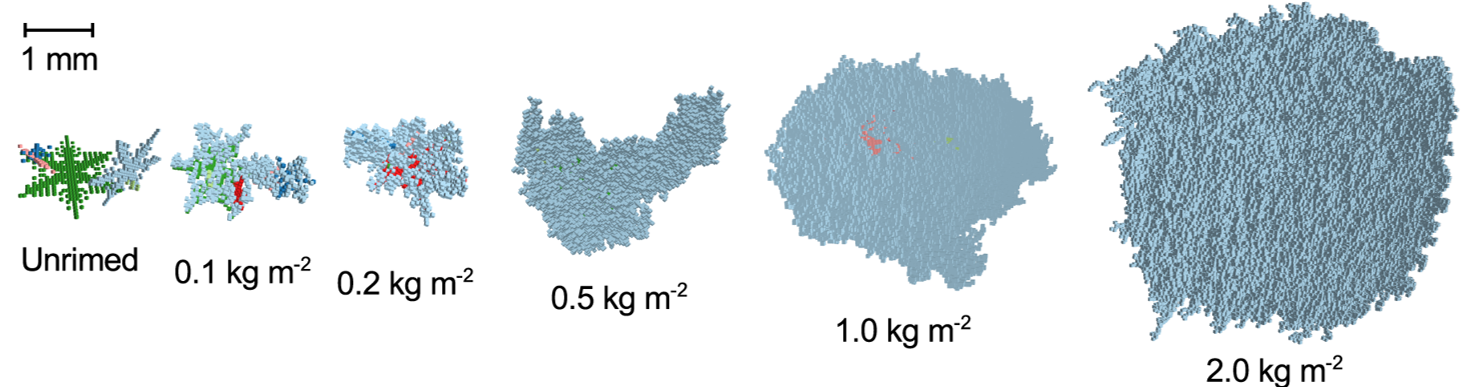 Illustration of modeled snow particles with a numerical aggregation and riming model.