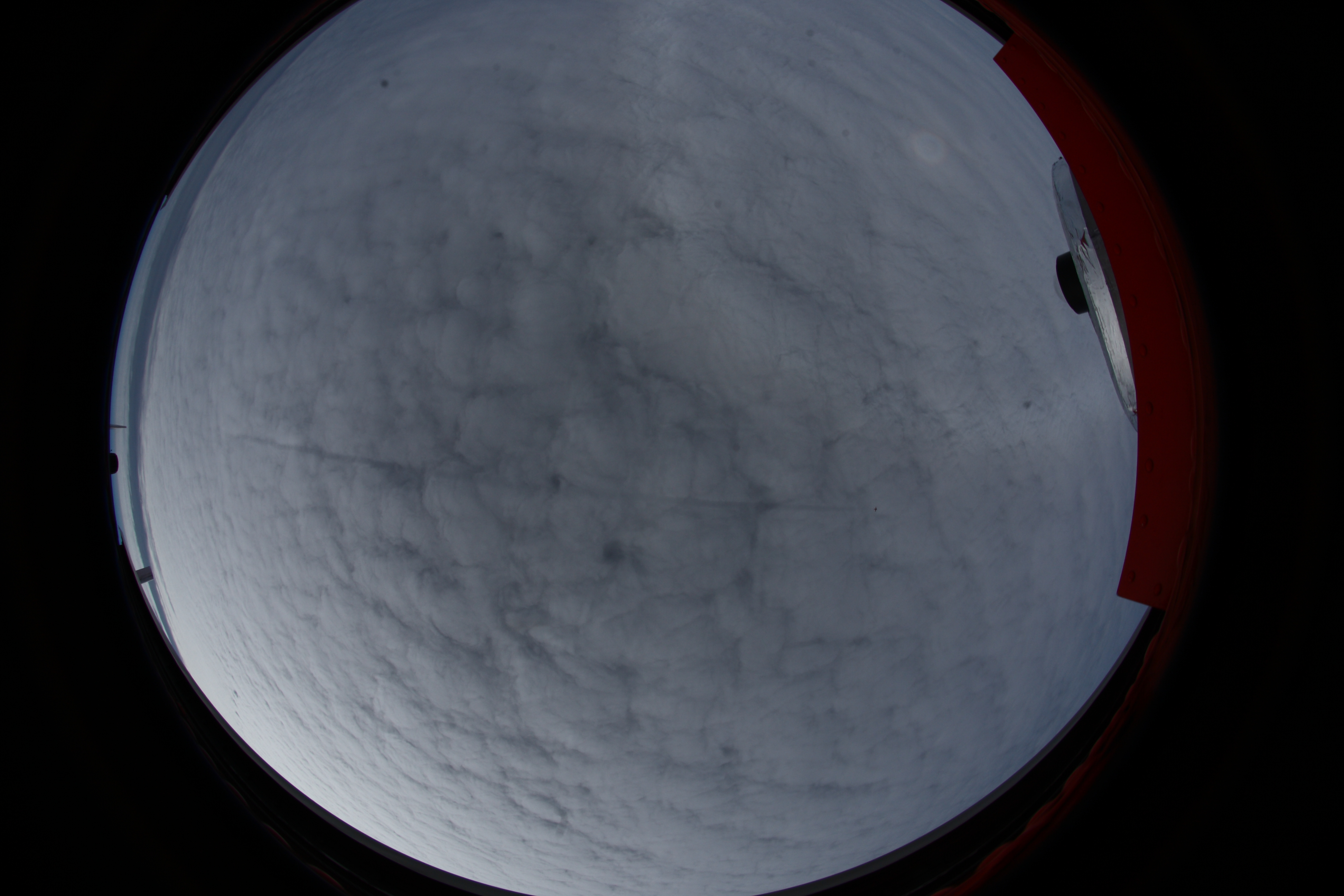 Fisheye image from Polar 5 on Arctic clouds and Polar 6 during ACLOUD.